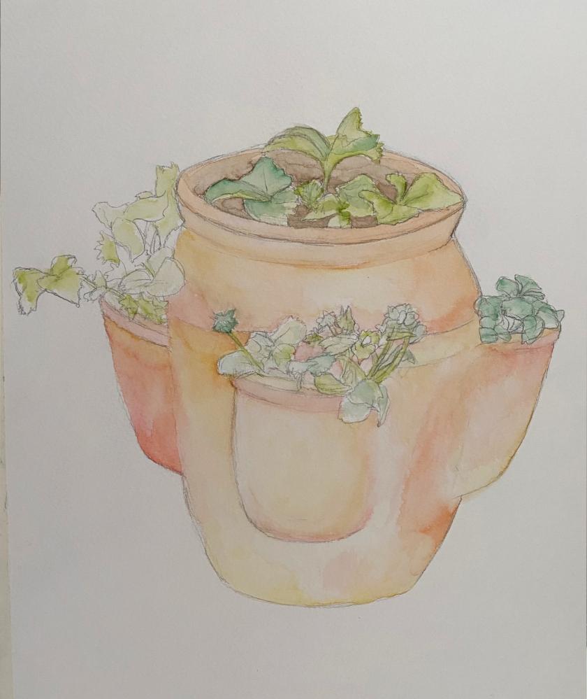 terracotta plat pot layer 1
