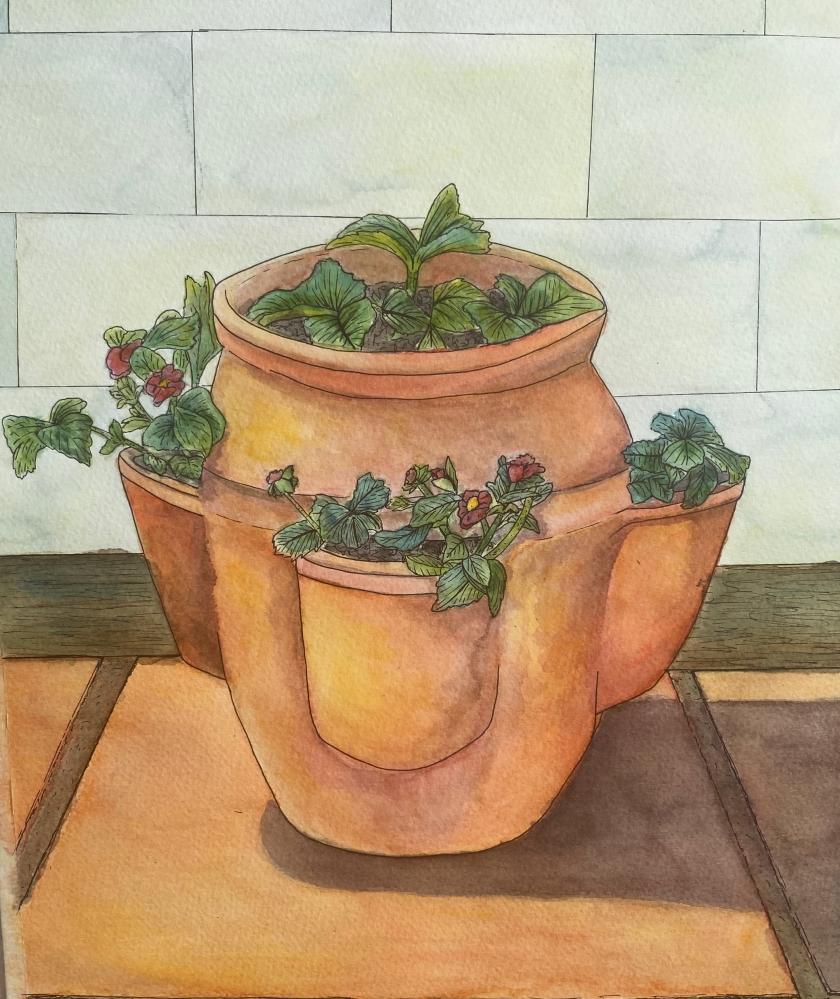 terracotta plat pot pen